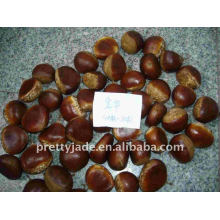 Chestnut price