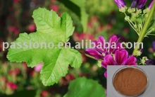 100% natural Malva Leaf Extract in stock at lowest price