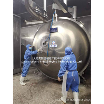 Fish Freeze Drying Equipment