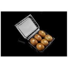 6pack kiwi fruits boîtes d'emballage en plastique