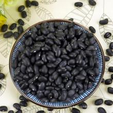 Machine sélectionnée petit haricot noir avec prix compétitif