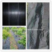 Tela tecida PP preta do geotêxtil 90GSM