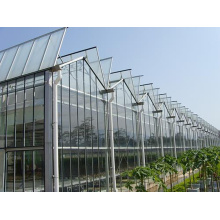 Hot Selling for for Nursery Glass Greenhouse Tomato Cucumber Flower Horticulture Venlo Glass Greenhouse supply to Swaziland Exporter