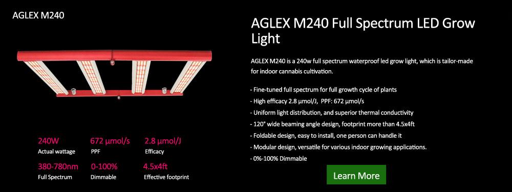 Aglex M240