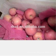 Fresh fed fuji apple 2017 of apple fruit