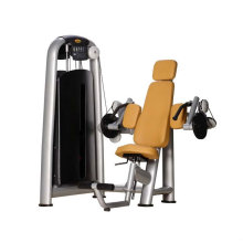 Ce approuvé Gym approuvé Triceps Press
