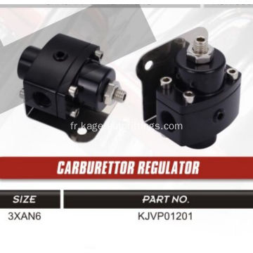 Carburrettor Regulater to Fuel Rail