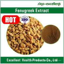 Common Fenugreek Seed Semen Trigonellae Extract