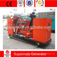 Energía verde silenciosa Generador de gas natural 25kva