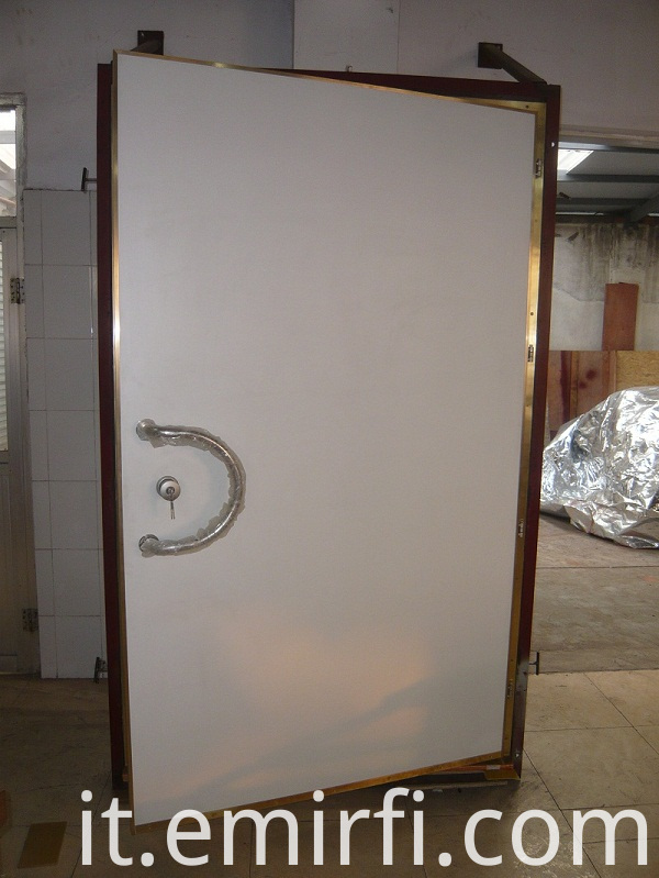 steel shielding door