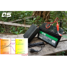 6V2A Batería de ácido de plomo Trickle automática Cargador de batería de almacenamiento de carga