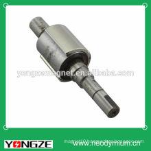 Strong permanent neodymium arc magnet in motor.