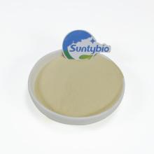 Additif pour alimentation de crevettes Bacillus Subtilis en poudre