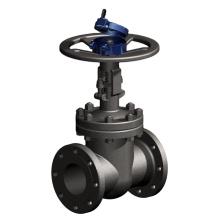 Baoji Rowlyn Special Titanium Gate valves