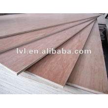 Door skin used plywood sheet made in China