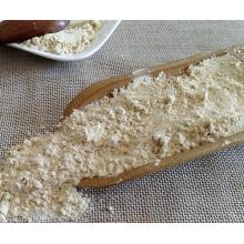 Pó de alho desidratado natural a granel por atacado