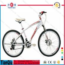 Factory Cheap Wholesale Popular Mountain Bike