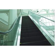China escada rolante 30degree