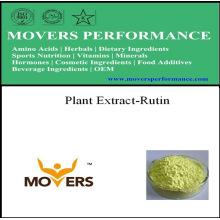 Plant Extract NF Grade Rutin