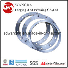 Japan Mill Certificate Stainless Steel Plate Flange