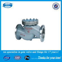 WCB or stainless steel swing check valve used in the nitric acid china supplier