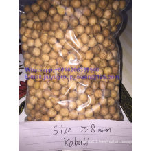 Food Grade New Crop Kabuli Chickpea