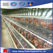 Quail Cage Laying Hens Chicken Cage Automatic Raising Equipment
