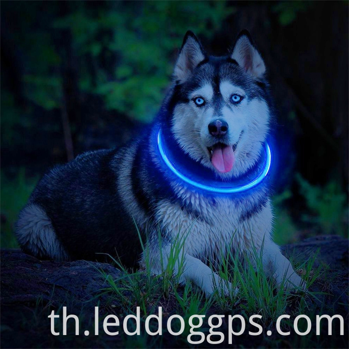 Cuttable Dog Collar