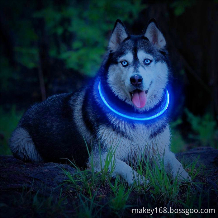 Tube Glow Flashing Dog Collar