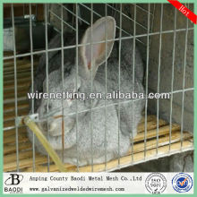 iron welded wire mesh panels for rabbit