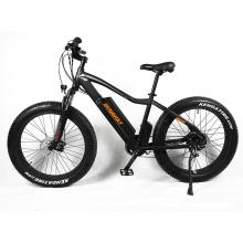 26 inch e bike electric bike 750W electric fat tire bicycle mountain ebike