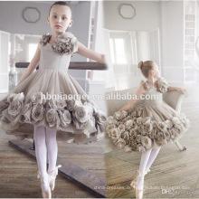 Rosen-Blumendekorationsbabymädchen-Tanzkleidung über Knie Eine Linie sleeveless Baby-Blumenmädchenkleid heiße Geschlechtsfotos