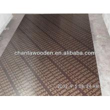 Linyi 12mm / 15mm / 18mm WBP núcleo de álamo de cara a la madera contrachapada