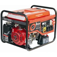Мощный бензиновый генератор для виллы (BH8500)