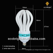 lâmpadas de poupança de energia de lótus