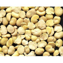 Husked Faba Bean Split 2017 New Crop