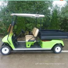 jinghang cargo chariot de golf 4kw