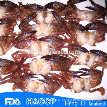 HL003 healthy seafood Frozen Black mud Crab