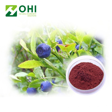 Freeze Dried Bilberry Fruit Juice Powder