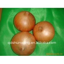 2012 oignons rouges chinois frais