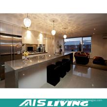 Professionelle Küchenschränke Möbel Export Hersteller (AIS-K196)