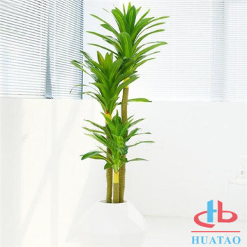 Pianta in vaso artificiale verde per la decorazione dell'hotel
