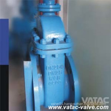 DIN Cast Iron Gg25/Gg40 RF Flanged Soft Seat Gate Valve
