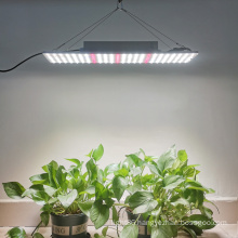 Liweida 240W 480W full spectrum IP65 waterproof fin aluminum and temperature control system led quantum grow lighing for orchid