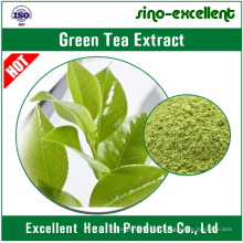 Extrato de Chá Verde Natural 100% Pó