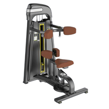 Rotary Torso Commercial Fitness Equipment