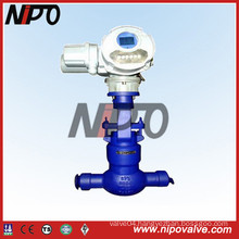 Globe Valve with Electric Actuator