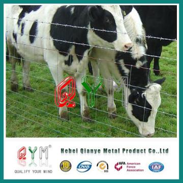 Barrière de bétail bon marché / clôture d'animaux / clôture de Caw / cerf de cerf