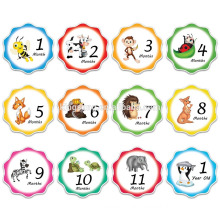 2018 amazon hot sale monthly baby sticker
