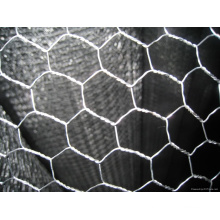 Chicken Mesh (electric galvanized)